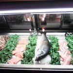 Fish counter as soon as you walk in adds a great touch