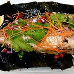 Pla Krapong Paw (Grilled Fish) Grilled Red snapper marinated with herbs and spicy coriander sauc