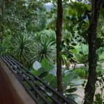 Photo of Boutique Raft Resort
