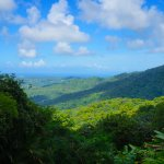 A view from the Yokahu Tower in the El Yunque rainforest.