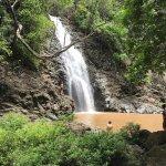 Montezuma Falls Foto