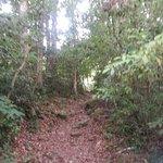 Photo de Selva Negra Mountain Resort
