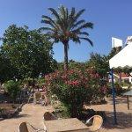 Foto de Hotel Fuerteventura Playa
