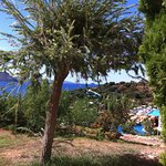 Photo de Yasmin Resort Bodrum