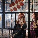 Herbarium in der Dauerausstellung