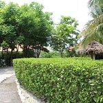 Photo de Lodge Las Ranas