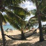 Photo de Leleuvia Island Resort