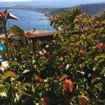 Photo de Hotel Villa Diodoro
