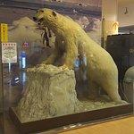 Terume Kanazawa Foto