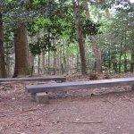 Photo of Mt. Kurama