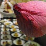 Breakfast Restaurant Rienäcker
