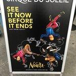 Foto de La Nouba - Cirque du Soleil