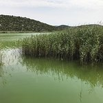 Vransko Jezero Nature Park