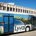 Lyvai Hop On Hop Off bus, great service, friendly driver, very efficient.