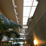 Foto di Hyatt Regency Orlando International Airport