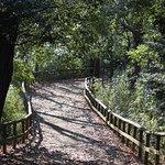 Photo of Ikuta Ryokuchi Park
