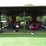Hammock lounge area