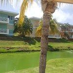 Foto de Sea Breeze Hotel