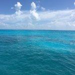 Scuba trip with Luis - 2 tank dive- Wreck dive C-58 shipwreck/ Drift reef dive. Scuba Cancun is