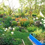 Nos jardins