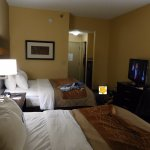 Comfort Inn & Suites at Stone Mountain Picture