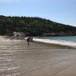 Ocean Trail Foto