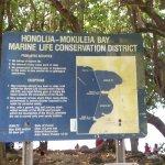 Honolua - Mokuleia Bay