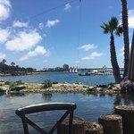 Foto di Paradise Point Resort & Spa