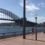 Opera House to Sydney Botanical Garden's Walk/ Harbour Bridge View