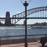 Opera House to Sydney Botanical Garden's Walk: Harbour Bridge view