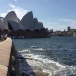 Opera House to Sydney Botanical Garden's Walk/ Sea View
