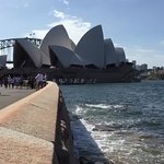Opera House to Sydney Botanical Garden's Walk/Opera House:Harbour Bridge Views