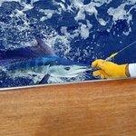 Huntress Sport Fishing