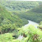 Wailua River view