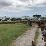 Photo de Nevis Equestrian Centre
