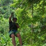 Treetops Zipline