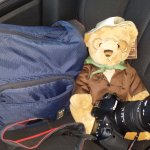 Theo, the teddy bear who was in my room, available for purchase. I couldn't resist - he's so cut