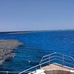 Photo de Dolphin House Reef (Sha'ab Samadai)