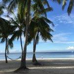 Foto de South Palms Resort