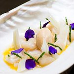 Orkney scallop, sea urchin, fennel and clementine