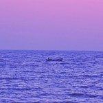 Evening at beautiful Dwarka beach !