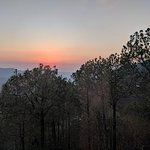 Pine Drive Resort Picture