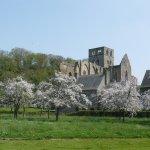 Abbaye de Hambye
