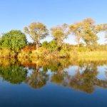 Foto de Mahangu Safari Lodge
