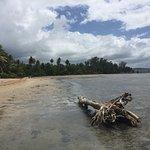 Foto de Hotel Yunque Mar