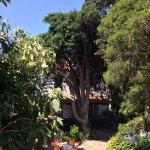 Photo de VBJ - Villa Branca Jacinta