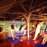 Treetop yoga studio with beach and sunset view surrounded by trees