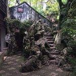 The Reflection Garden in Tongli