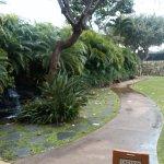 Walkway on grounds