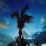 The Cove Atlantis, Autograph Collection Foto